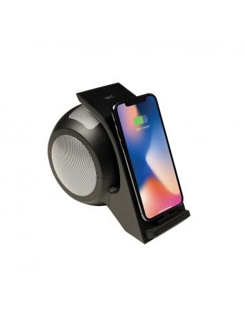 Kiwi Speaker